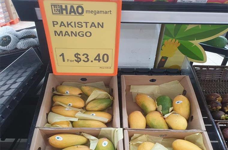 FO rejects factually incorrect reports about Pakistani mangoes gift