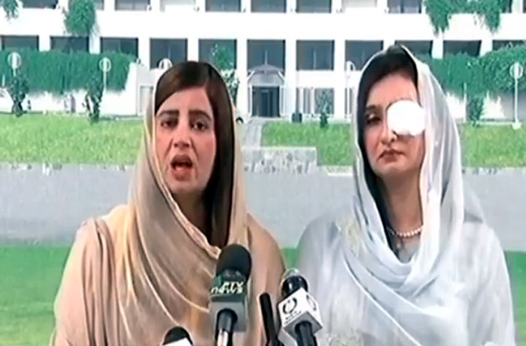 PMLN MNAs suspension for attacking PTI women members demanded